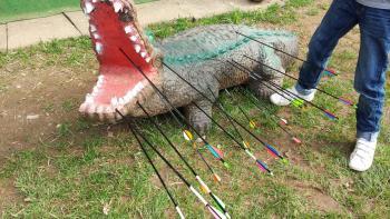 3D - Boogschieten op een kunststof krokodil als doel